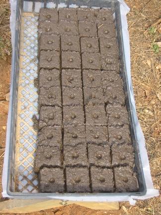 soilblock3