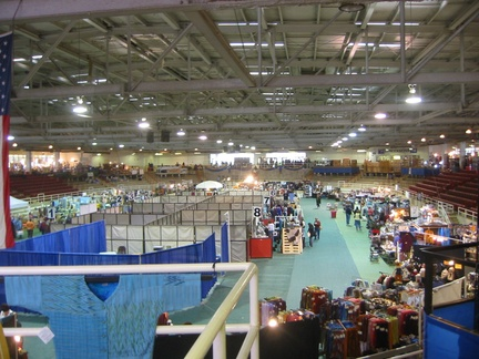 The main arena